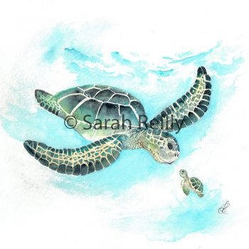Turtle Tail by Sarah Reilly, Suffolk Artist, Love Country by Sarah Reilly