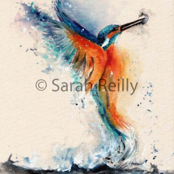 Kingfisher by Sarah Reilly, Artist, Love Country