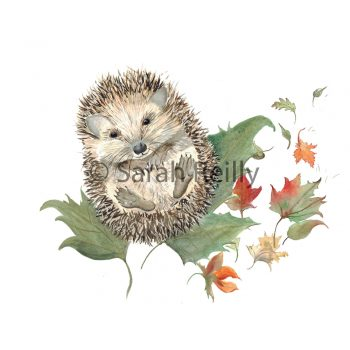 Mr Prickles Hedgehog by Sarah Reilly Suffolk Artist Love Country by Sarah Reilly