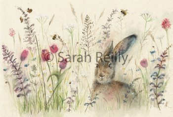 Spring is Hare