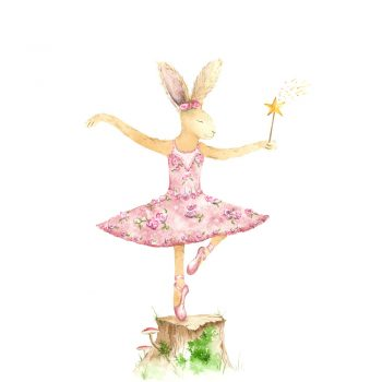 Bunny Ballerina by Sarah Reilly