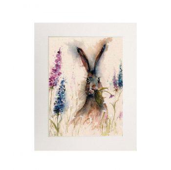 Mounted Prints (Medium) £20.00