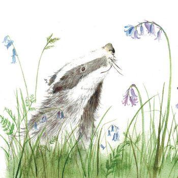 Blissful Badger