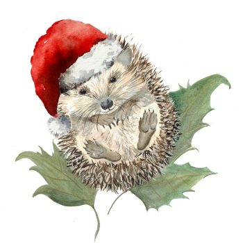 Mr Prickles Christmas Party